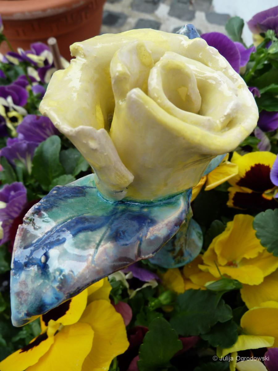 Die gelbe Rose - Julija Ogrodowski