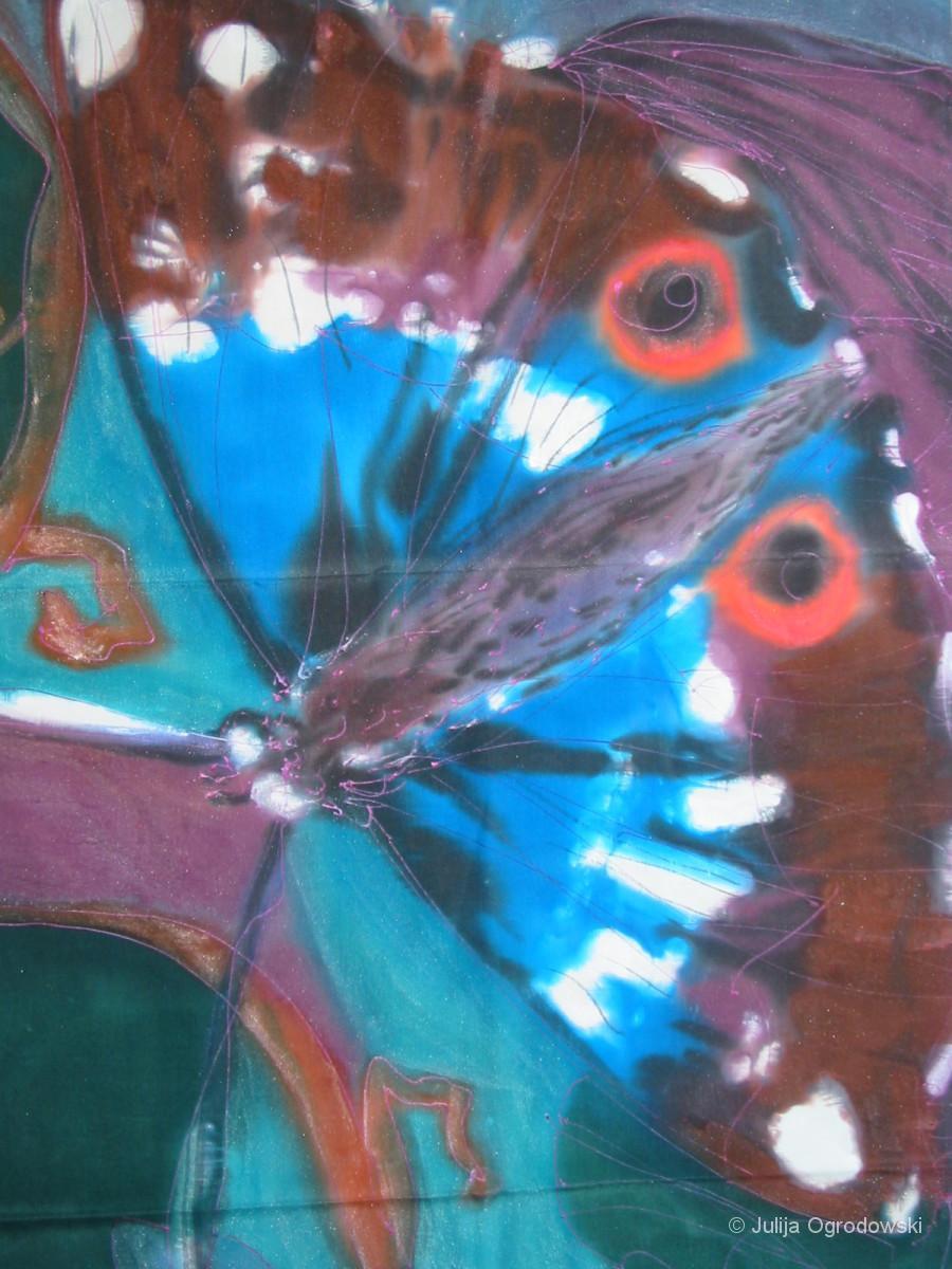 Schmetterling Apatura iris - Julija Ogrodowski
